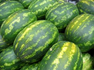 watermelon_whole.jpg
